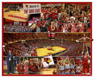 Illinois State Basketball Fan Composite
