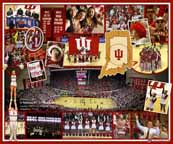 Indiana Fan Composite 2013