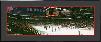 Stanley Cup Playoffs 1990 Photo