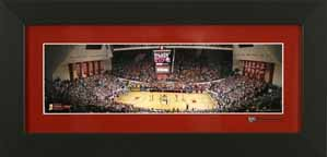 Indiana Basketball Panorama