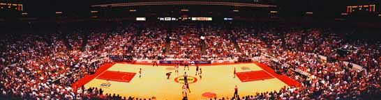 1994 NBA Finals | Game 2 Panorama